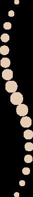 icone de colonne vertebrale